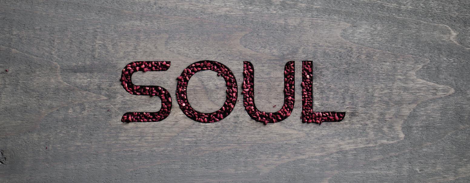 Rain Soul online kaufen - LebensForm Onlineshop